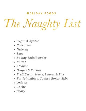 Dog Safe Holiday Foods: The Naughty List - What Foods are Bad for your Dog at Christmas | Pretty Fluffy #dog #health