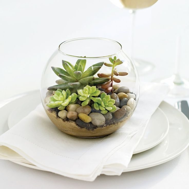 Making a beautiful terrarium is a perfect way to bring the outside indoors during the winter months.