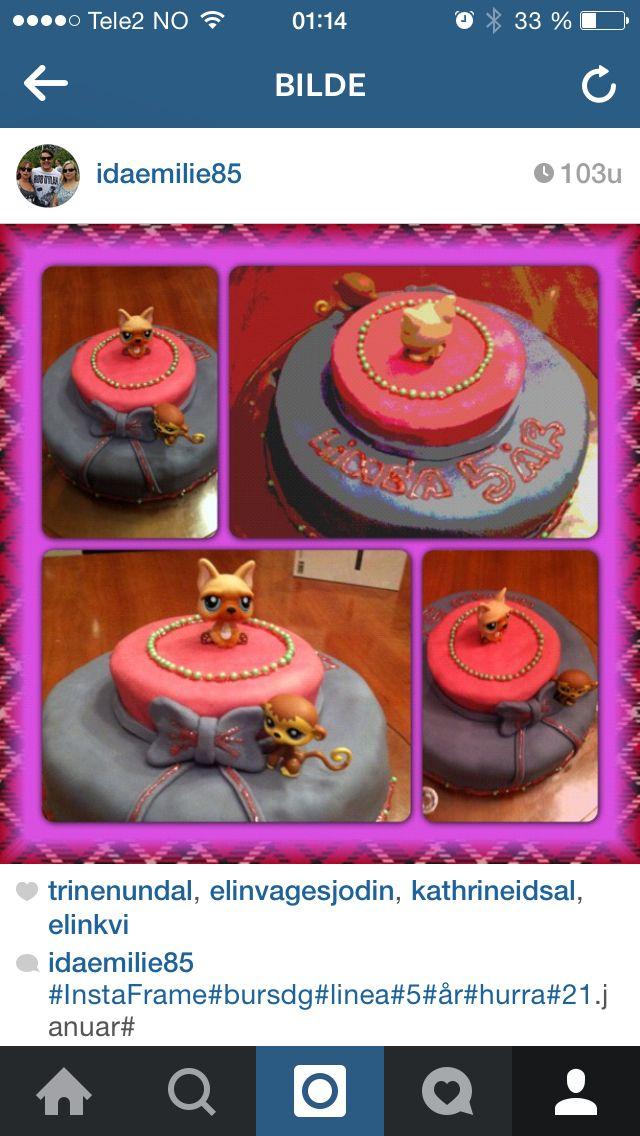 Bursdag,sjokoladekake,pet shop,rosa,lilla