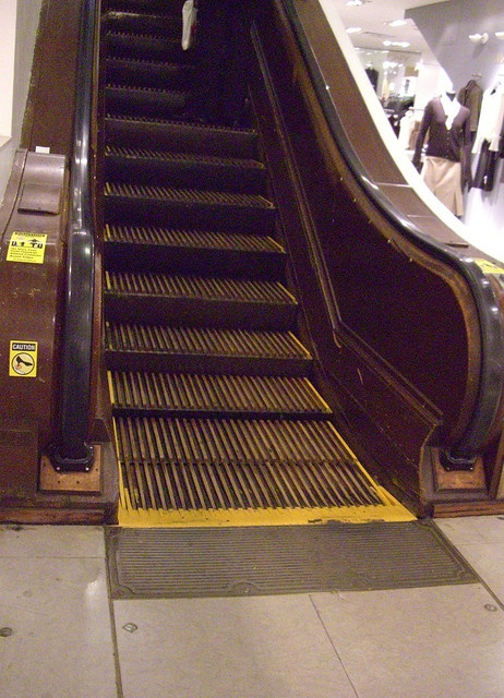 The wooden escalator in Higbee's, downtown Cleveland OH.  The sound it made!!