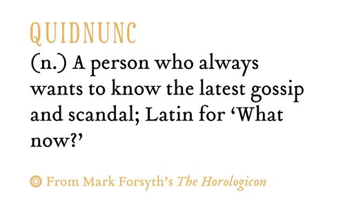 """quidnunc 