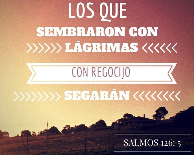 """""""Los que sembraron con lágrimas, con regocijo segarán"""", Salmos 126:5."""