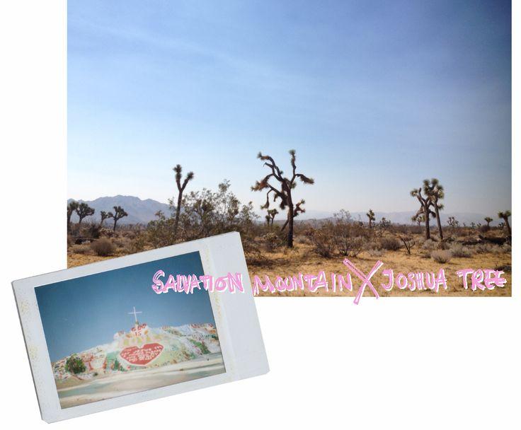 Salvation Mountain X Joshua Tree