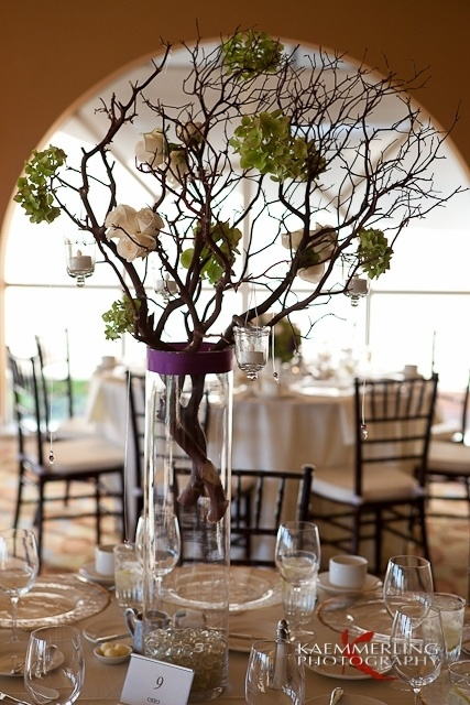 84 best banquets private events images on pinterest banquet sunset room at chaminade resort with beautiful tall flowers and branches as centerpieces this branch centerpiecestall centerpiececenterpiece ideaswedding junglespirit Image collections