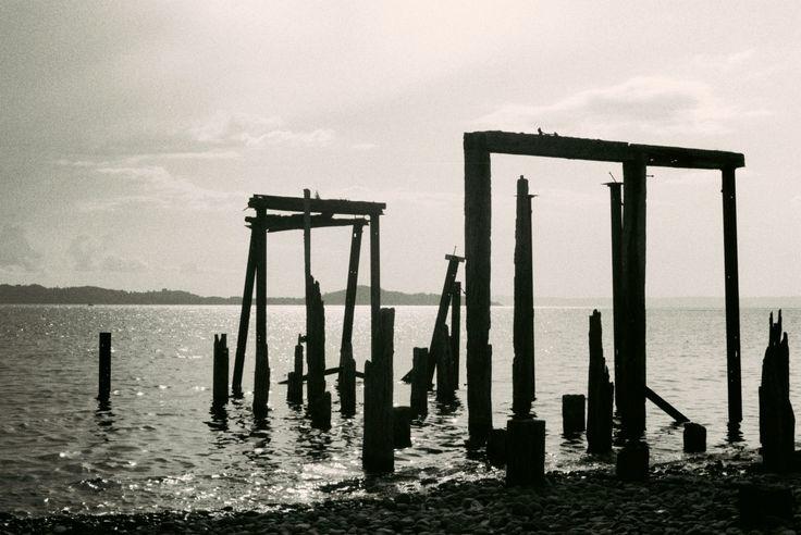 Lago Ranco, Chile  B/N