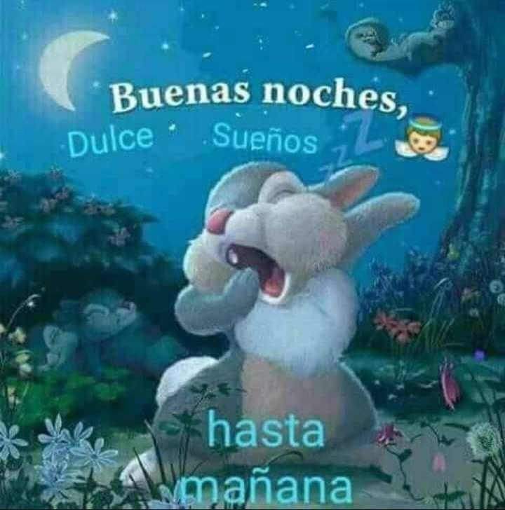 Buenas Noches Pensamientos De Buenas Noches Saludos De Buenas Noches Imagenes De Buenas Noches Graciosas