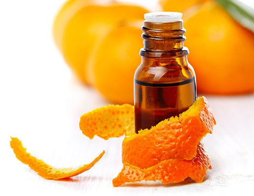 orange essential oil cover 520