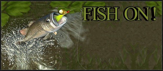 USA Fishing Derbies & Tournaments Directory.  Whether it's bass, walleye, muskie, crappie, catfish, marlin, sailfish, billfish, salmon, shark or trout, this website will list a contest, derby or tournament for whatever species fisherman you are.