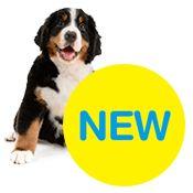 QUALIPET für Hunde: Hundezubehör und Hundebedarf im Online Shop