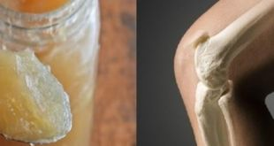 gelatina para el dolor de huesos