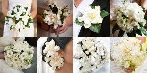 Gardenia Wedding Flowers | The Wedding Specialists