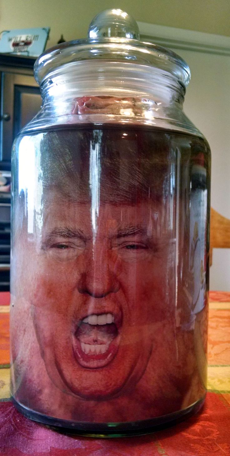 Donald trump head in a jar for a halloween prank or prop for Heads in jar