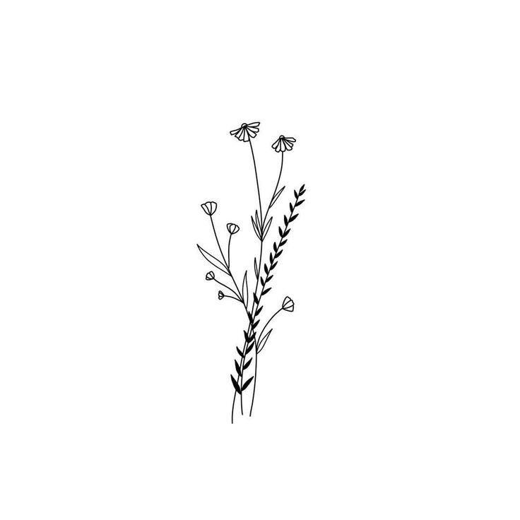 B L O O M • • • • • • • • #Design #available #draw #drawing #ski