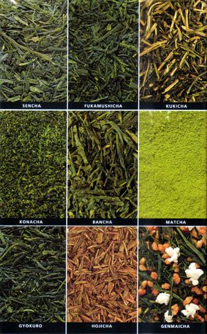 There are about 20 different types of Japanese tea: Sencha, Fukamushicha, Kukicha, Konacha, Bancha, Matcha, Gyokuro, Hojicha, Genmaicha.. I love green tea!