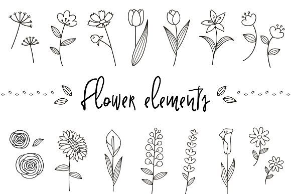 Flower elements  by chloe on @creativemarket