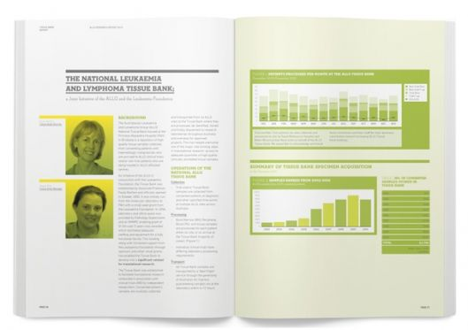 Research Report 2010
