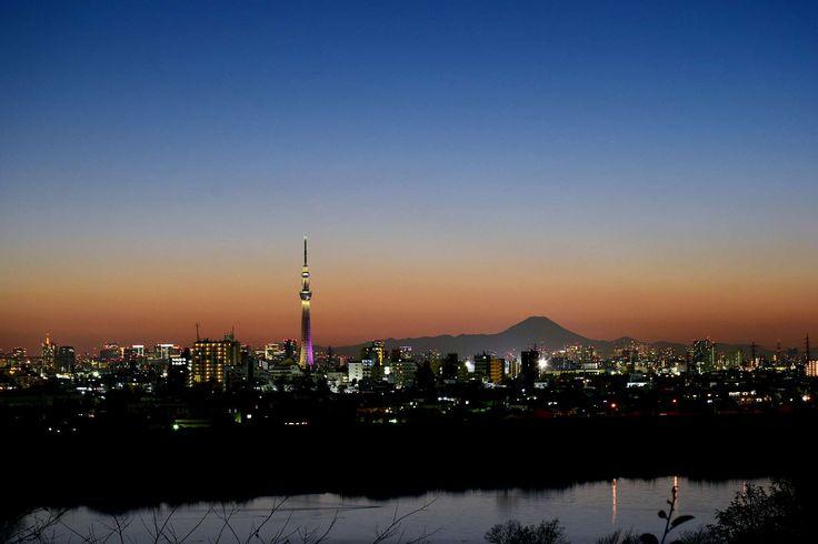 市川市の里見公園で2016年1月10日撮影した富士山・東京スカイツリー・江戸川の夜景です。Night View of Mt. Fuji, Tokyo Sky Tree and Tokyo tower From Satomi Park,Ichikawa,Japan