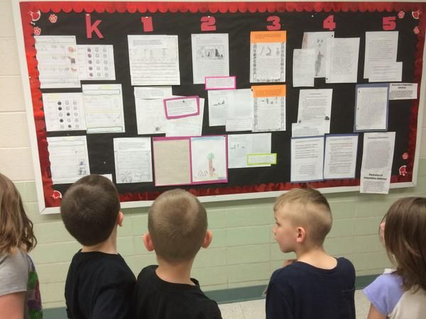 Facilitating learning and assessment in practice essay