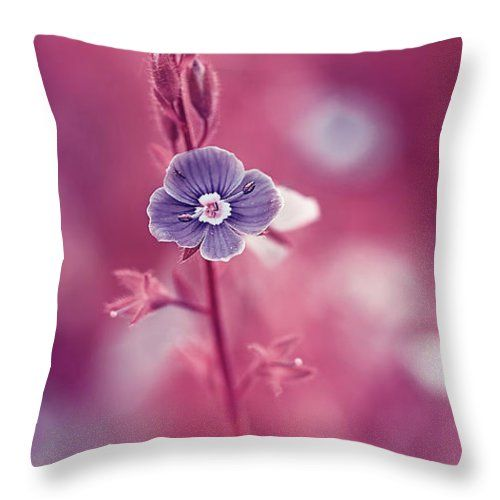 Beautiful Throw Pillow featuring the photograph Small Romantic Violet Flower by Oksana Ariskina. Small blue wildflower forget-me-not, closeup view on violet pink toned background. Available as mugs, posters, greeting cards, phone cases, throw pillows, framed fine art prints, metal, acrylic or canvas prints, shower curtains, duvet covers with my fine art photography online: www.oksana-ariskina.pixels.com #OksanaAriskina