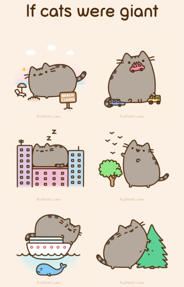 If cats were giant | Pusheen the cat!!! | Pinterest | Cats Nyan Cat Adorable