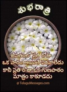Telugu Good Morning Quotes, Good Night Pictures, Love Quotes, Telugu Jokes: Telugu Good Night Quote on Life