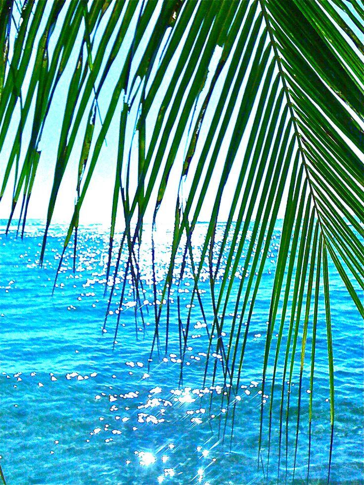 Diamonds on the water, Playa del Carmen, Mexico