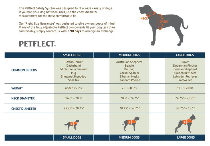 Dog Breed Chart By Size