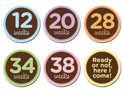 Oh Sew Ready - Pregnancy Milestone Stickers | Boutique Brands