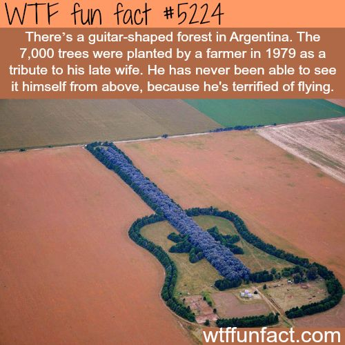 25+ best ideas about Argentina facts on Pinterest ...