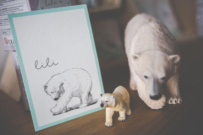 Het geboortekaartje van Lili