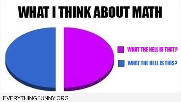 funny cartoon pie chart what i think about math what the hell is this what the hell is that