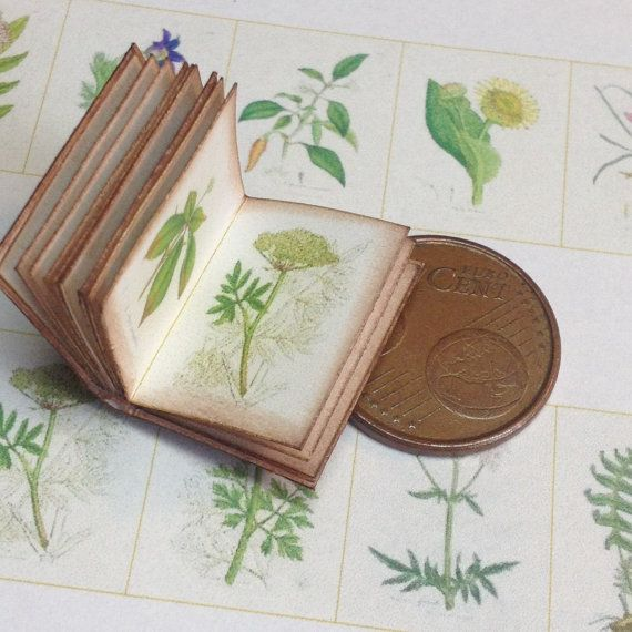 1:12 Miniature medical bothany book by WeLoveMiniatures on Etsy