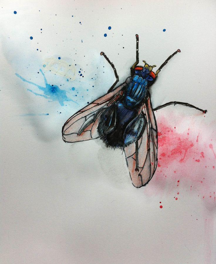 30 besten cartoon fly tattoo bilder auf pinterest for Fliegen in topfpflanzen