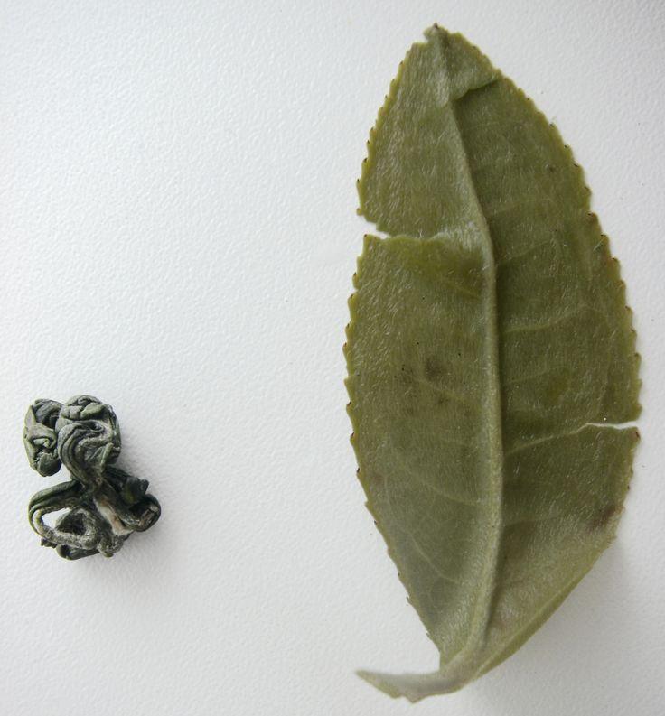 Чайный лист - это показатель качества чая!