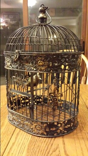 Bird & Cage Sets