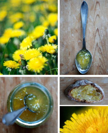 Använd ditt ogräs! Av maskrosor kan man göra god marmelad