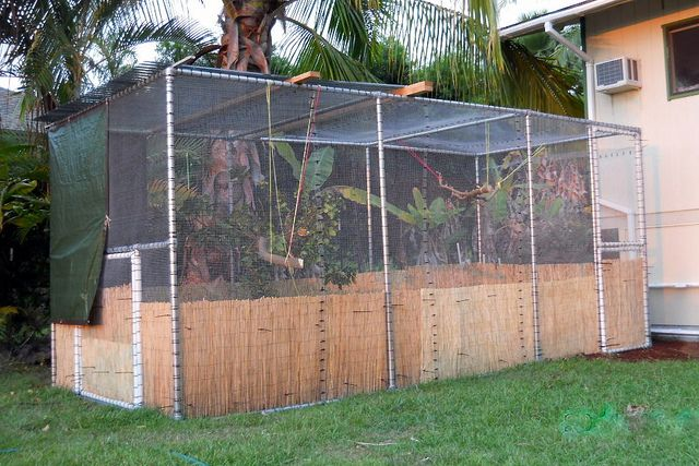 Kee Lite Flight Cage by Simplified Building Concepts, via Flickr