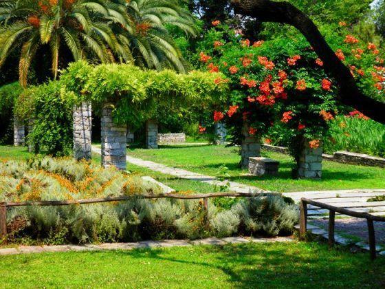 Ο μεγαλύτερος βοτανικός κήπος της ανατολικής Μεσογείου βρίσκεται στην Αθήνα. Και οι περισσότεροι δεν τον γνωρίζουν καν!