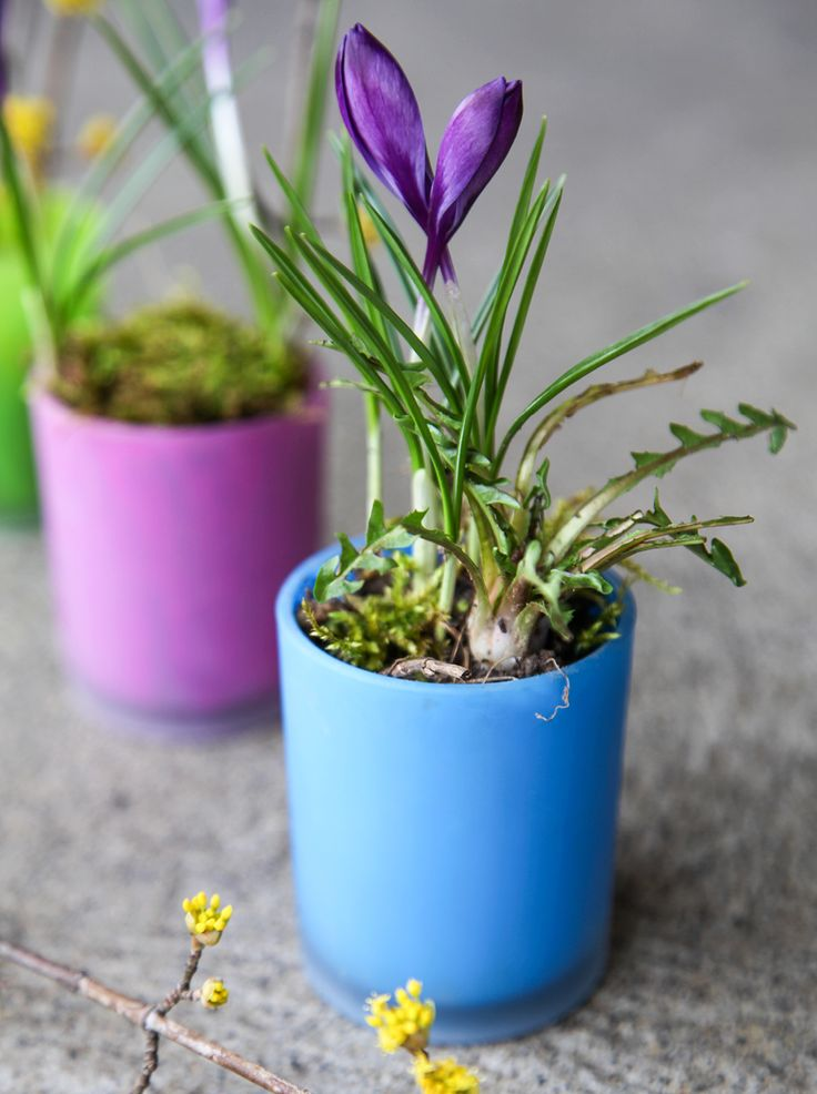 1000+ images about // DIY on Pinterest Notebooks, Bowls and Duct ...