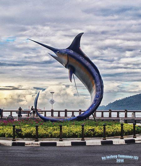 Xiphias gladius-symbol Kota - Kinabalu Photo by Jozheg Tumanov -- National Geographic Your Shot