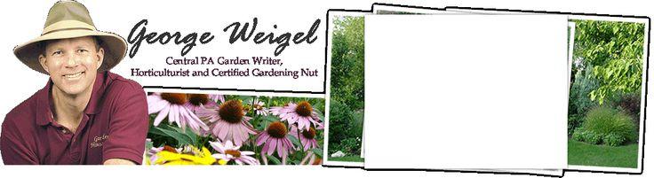 George Weigel - Central PA Gardening? A list of his favorite varieties of everyhting.