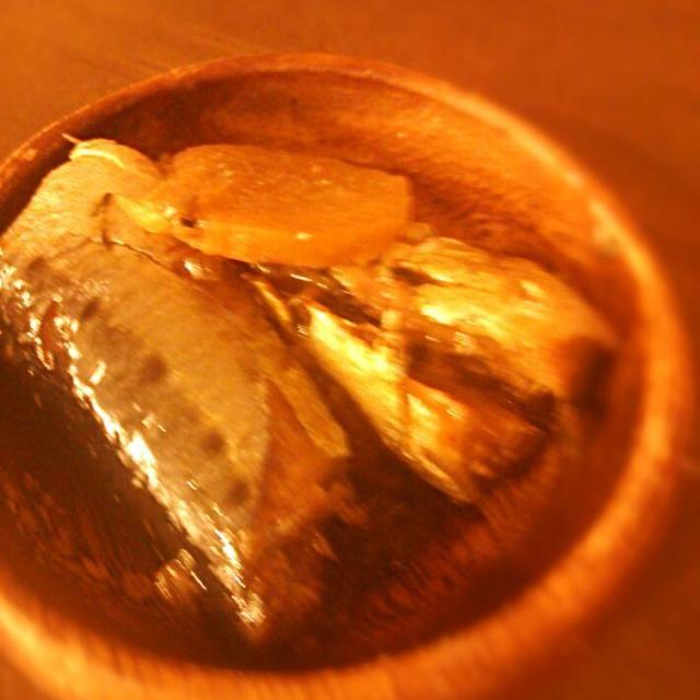 圧力鍋で骨まで食べましょ♪ - 7件のもぐもぐ - 圧力鍋でイワシの梅煮 by mikiruru42