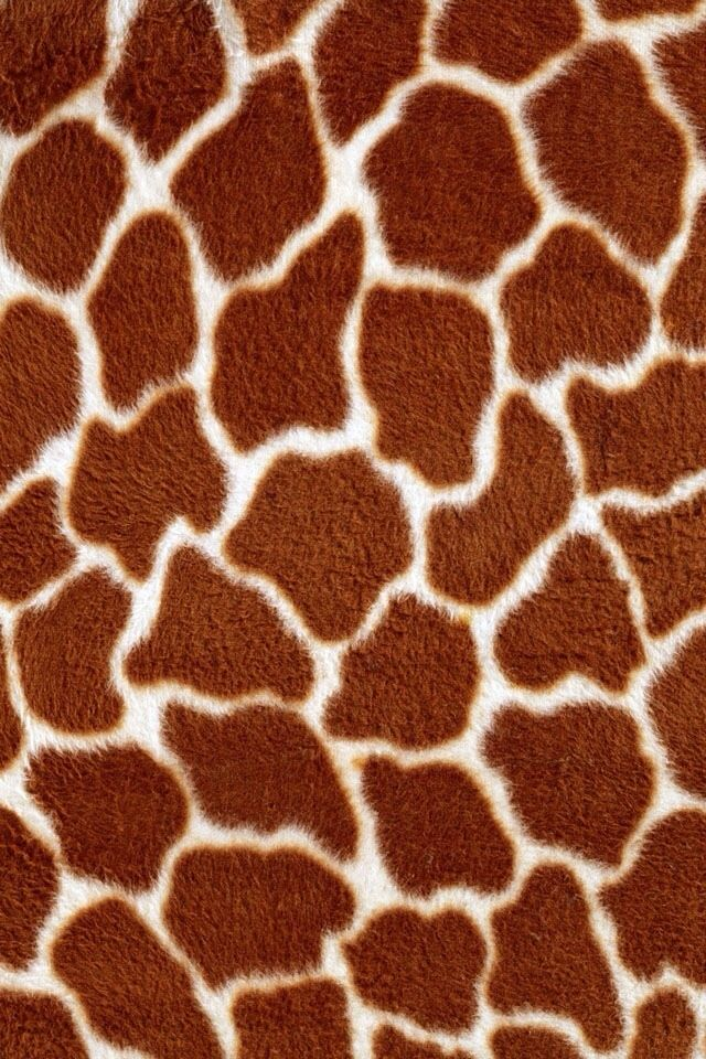 Giraffe animal print wallpaper for iphone or android