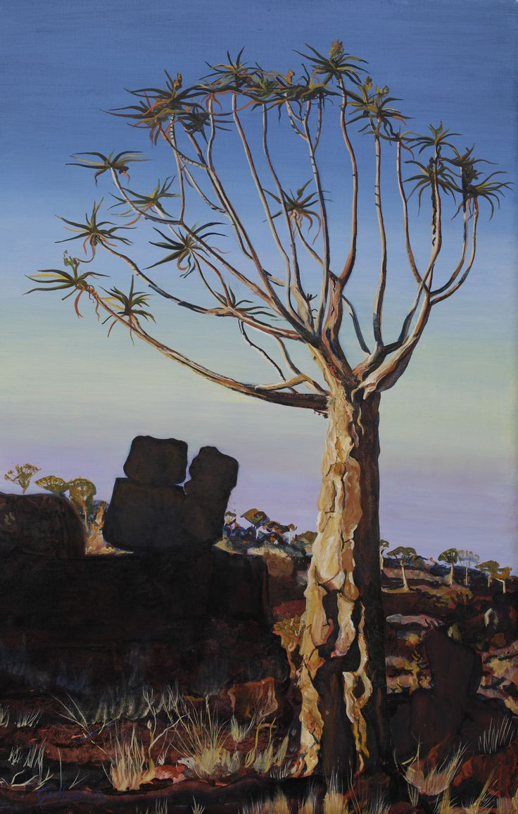 Oil paintings of wild quiver trees.