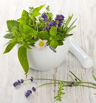 ekoMalwa - Poczuj jak smakuje zdrowie: ZIOŁA SZWEDZKIE LEKIEM NA TRĄDZIK, BEZSENNOŚĆ I WI...