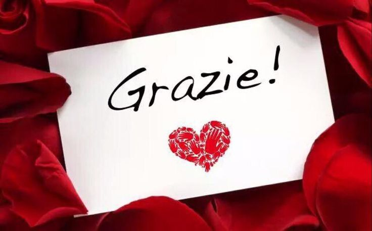 Grazie mille! Thank you very much