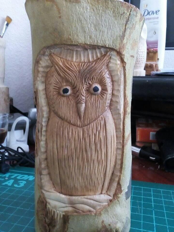 #wooodcarvings, #woodspirit, #owl