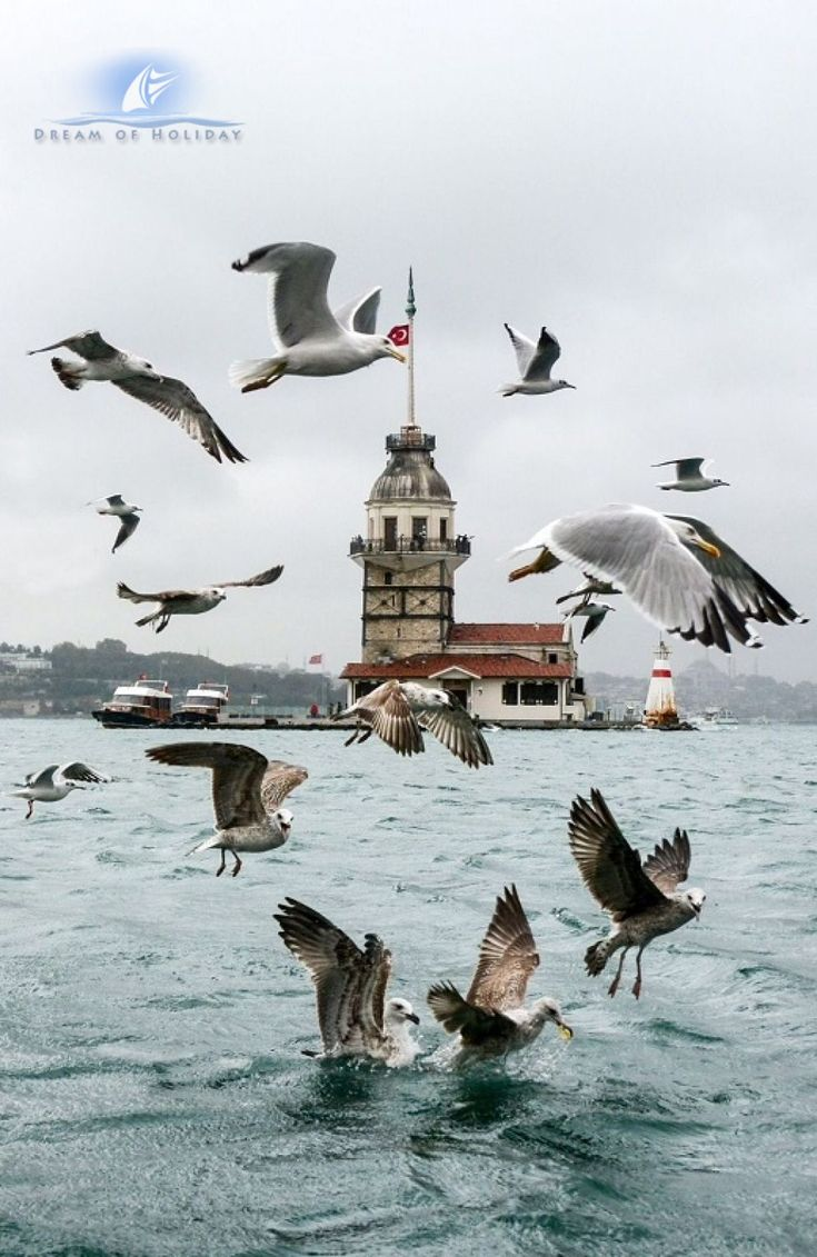 holiday-in-istanbul-turkey