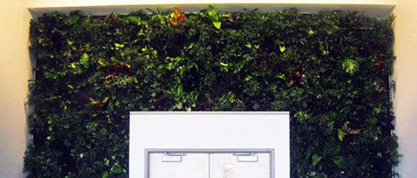 17 Best Images About Living Walls On Pinterest Gardens