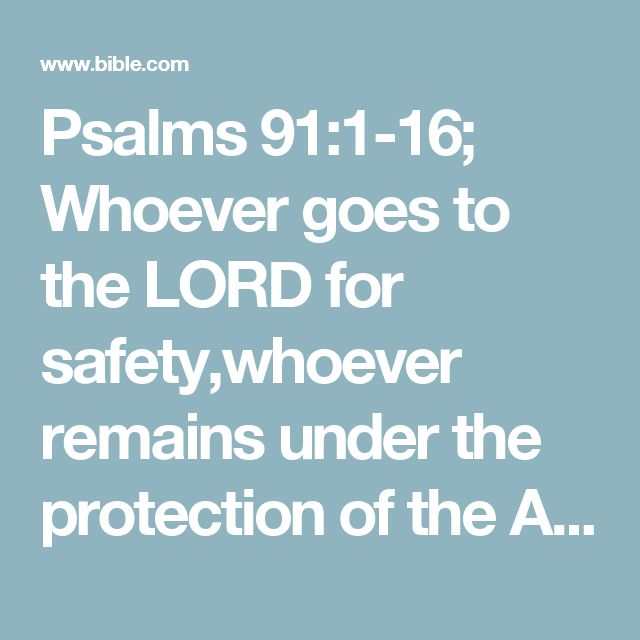 "Psalms 91:1-16; Whoever goes to the LORD for safety,whoever remains under the protection of the Almighty,  can say to him,""You are my defender and protector.You are my God; in you I trust.""  He will keep you safe from all hidden dangersand from all deadly diseases.  He will cover you with his wings;you will be safe in his care;his faithfulness will protect and defend you.  You need not fear any dangers at nightor sudden attacks during the day  or the plagues that strike in..."